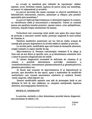 Pag 96