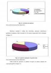 Cai de crestere a motivatiei angajatilor in cadrul companiei SC Boromir SA