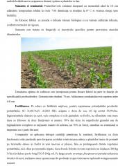 Managementul activitatilor in exploatatia agricola Mosteanu, comuna Schitu, judetul Olt