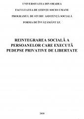 Reintegrarea sociala a persoanelor care executa pedepse privative de libertate