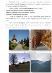 Elaborarea mixtului promotional in marketingul turistic din Valea Jiului