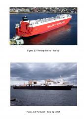 Portcontainer 1.920 T.E.U. (considerente preliminare)