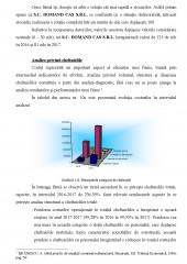 Diagnosticarea strategica in cadrul firmei SC Domand CAS SRL