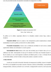 Auditul sistemului de management al calitatii - Principii, etape, documentatie