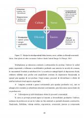 Implementarea unui sistem de managementul calitatii dupa seria de standarde ISO 9000 - Studiu de caz la Unilever SA