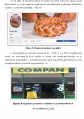 Principalele aspecte privind marketingul painii si a produselor de panificatie la SC Compan SA Iasi